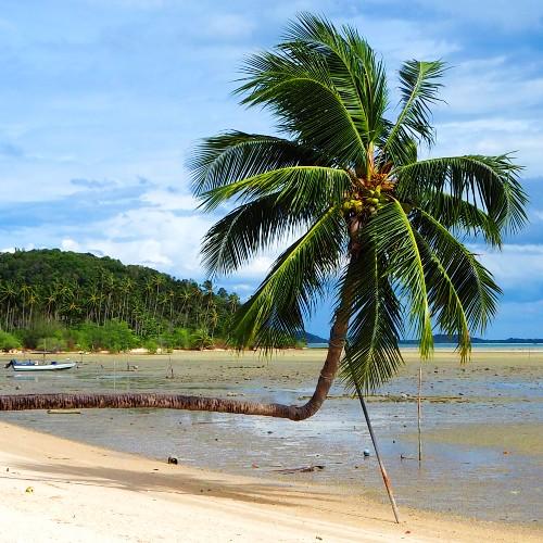 Tongkrut Beach